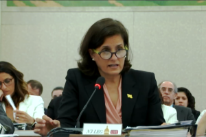 State Treasurer Elizabeth Maher Muoio testifies before the Senate and Assembly budget committees on May 14.